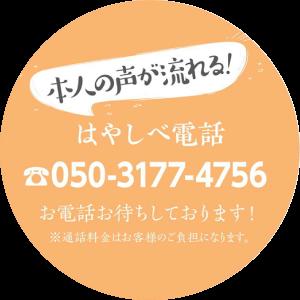 hayashibe-telephone